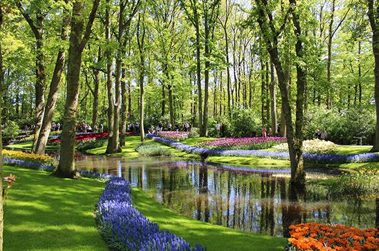 Excursión a los jardines de tulipanes de Keukenhof