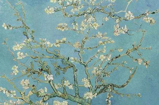 Tour al Museo van Gogh